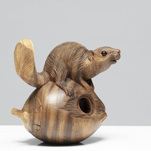 Eichhörnchen auf Nuss |aus...